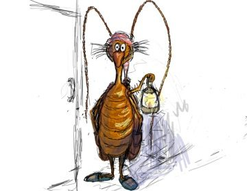 приснились тараканы