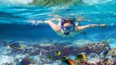 к чему снится купаться в море